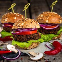 Vegan burgers- Meat Alternative Vegan Blend